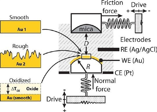 <strong>Electrochemical Surface Forces Apparatus (EC-SFA)</strong><br /><br /><span>We operate two newly designed electrochemical surface forces apparatuses (EC-SFA) that allows control and measurement of surface potentials and interfacial electrochemical reactions with simultaneous measurement of normal interaction forces (with nN resolution), friction forces (with nN resolution), and distances (with Å resolution) between apposing surfaces. <br /></span>