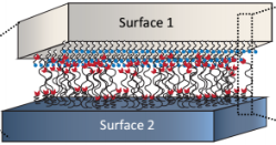 <span>Our research focuses on the broad areas of adhesion, friction as well as interfacial forces and their utilization for making better energy-saving, energy efficient, cheaper, long lasting smart materials for application in structural and functional materials. In particular we are also interested in dynamic interaction forces and soft matter physics in confined spaces.</span>