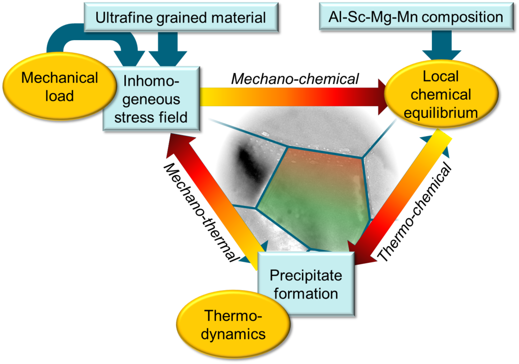 Studied thermo-chemical and thermo-mechanical coupling during the precipitate formation in Al-Sc-Mg alloys.