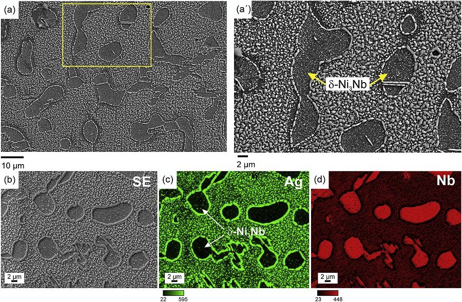 Study Of Hydrogen Embrittlement By Using Multi Scale And