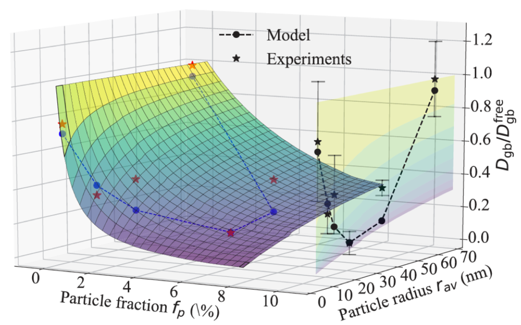Fig 1: Computed 3D surface showing the variation of the renormalized diffusion coefficient of tracer Co with the particle size and fraction. The computed non-monotonic behavior agrees very well with experiments.