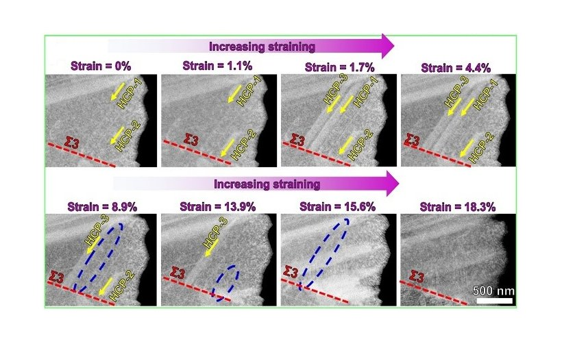 In situ S/TEM observation of phase transformations in high-entropy alloys